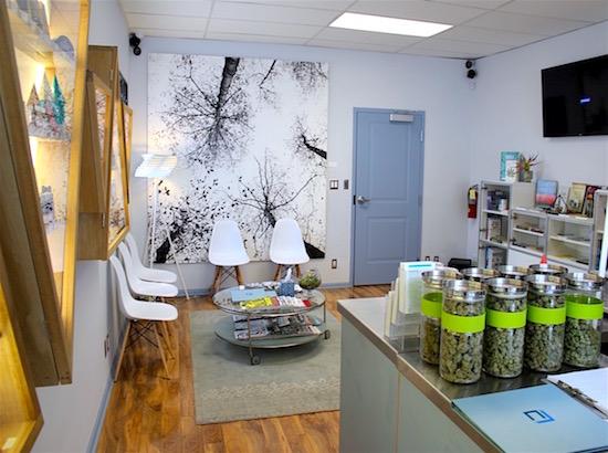 Hopegrown-Cornerstone-Collective-showroom-wide